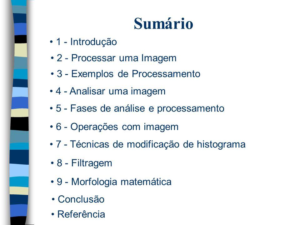Sumário 1 - Introdução 2 - Processar uma Imagem