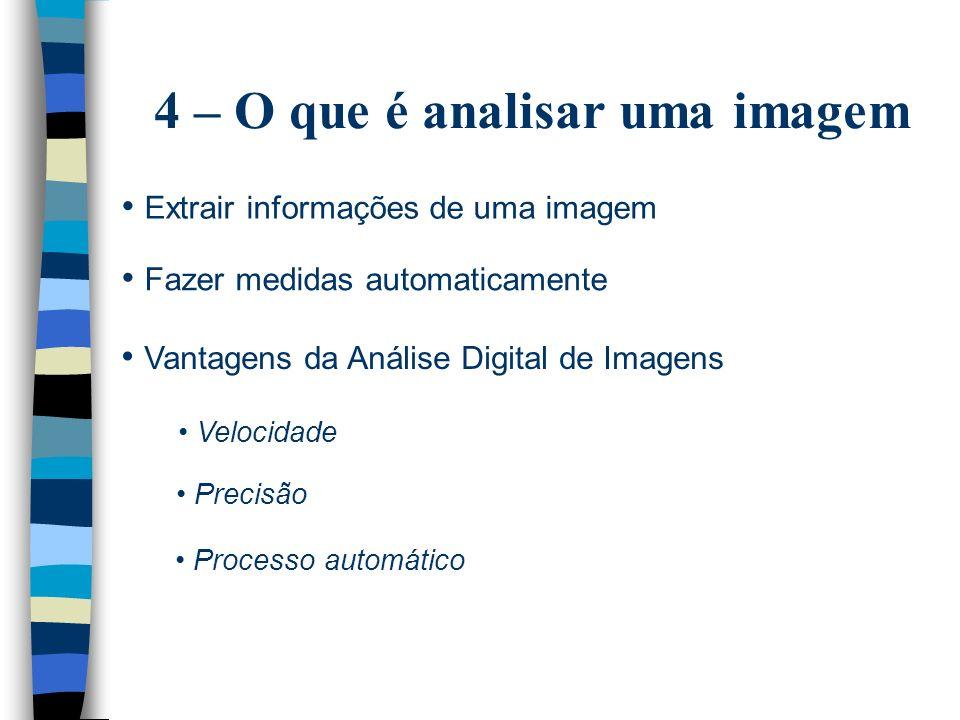 4 – O que é analisar uma imagem
