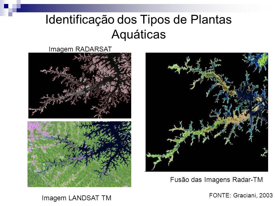 Identificação dos Tipos de Plantas Aquáticas