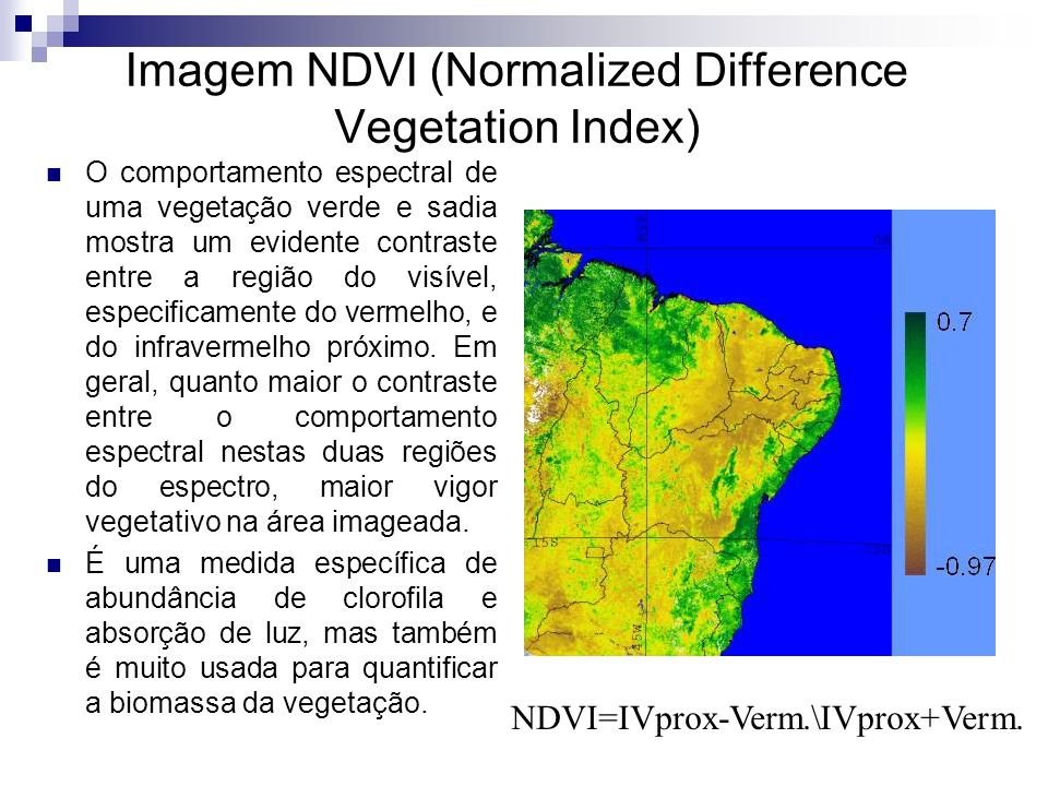 Imagem NDVI (Normalized Difference Vegetation Index)