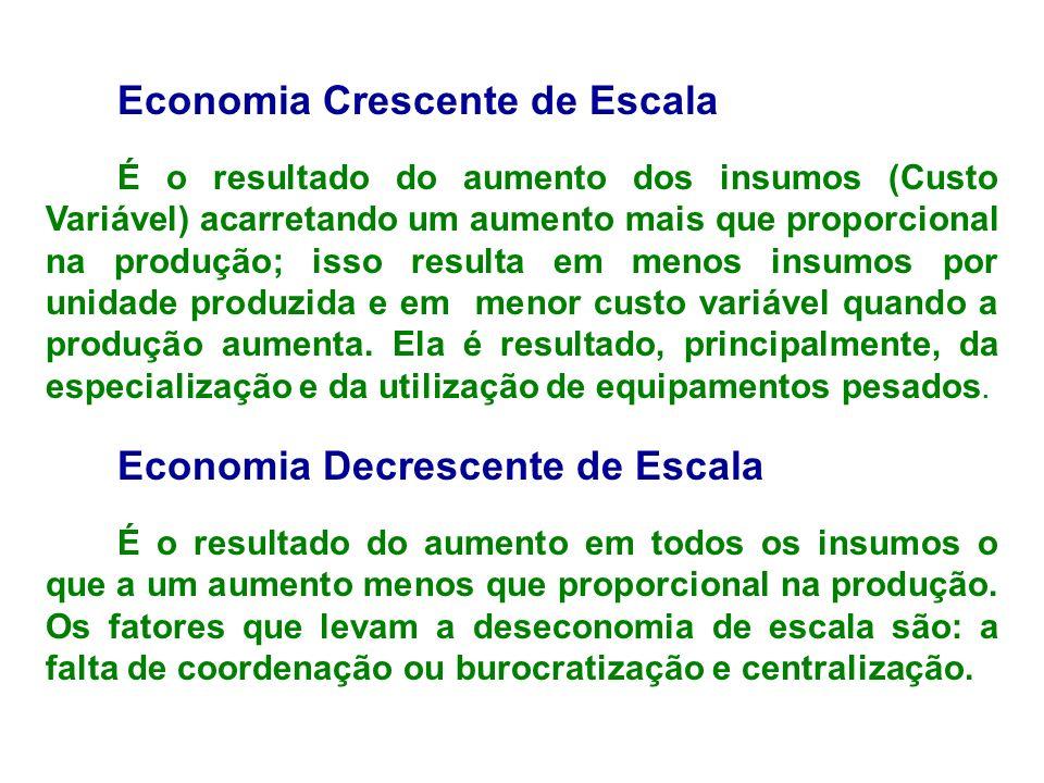Economia Crescente de Escala