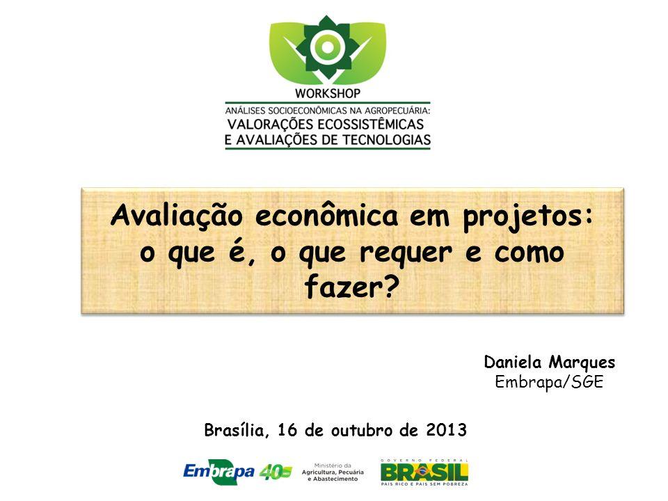 Avaliação econômica em projetos: o que é, o que requer e como fazer