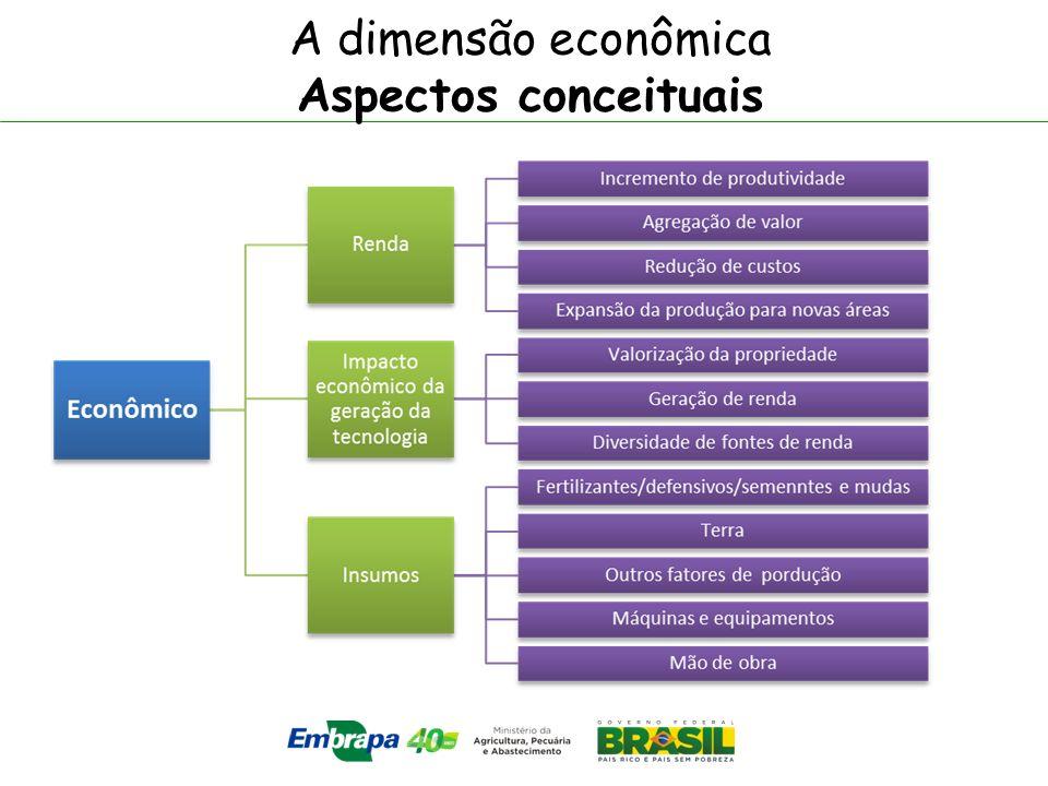 A dimensão econômica Aspectos conceituais
