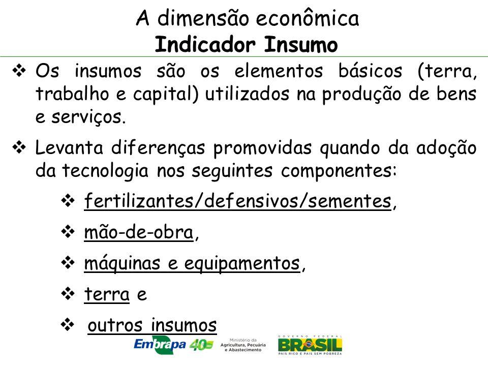 A dimensão econômica Indicador Insumo