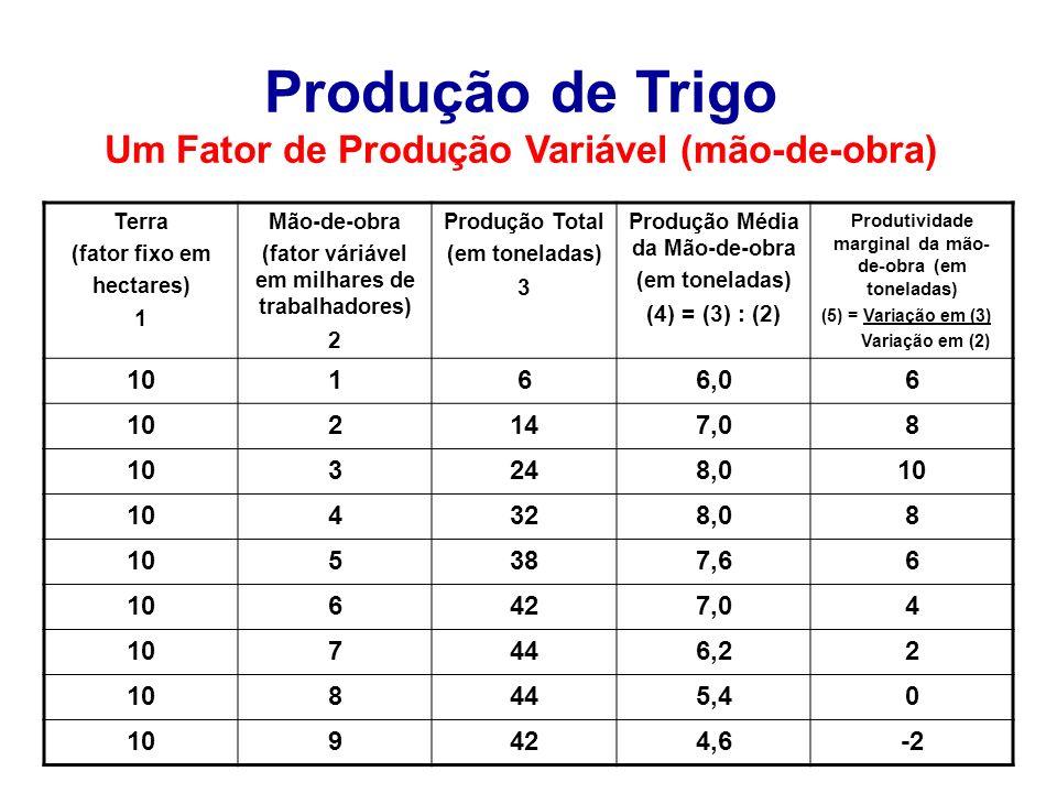 Produção de Trigo Um Fator de Produção Variável (mão-de-obra)