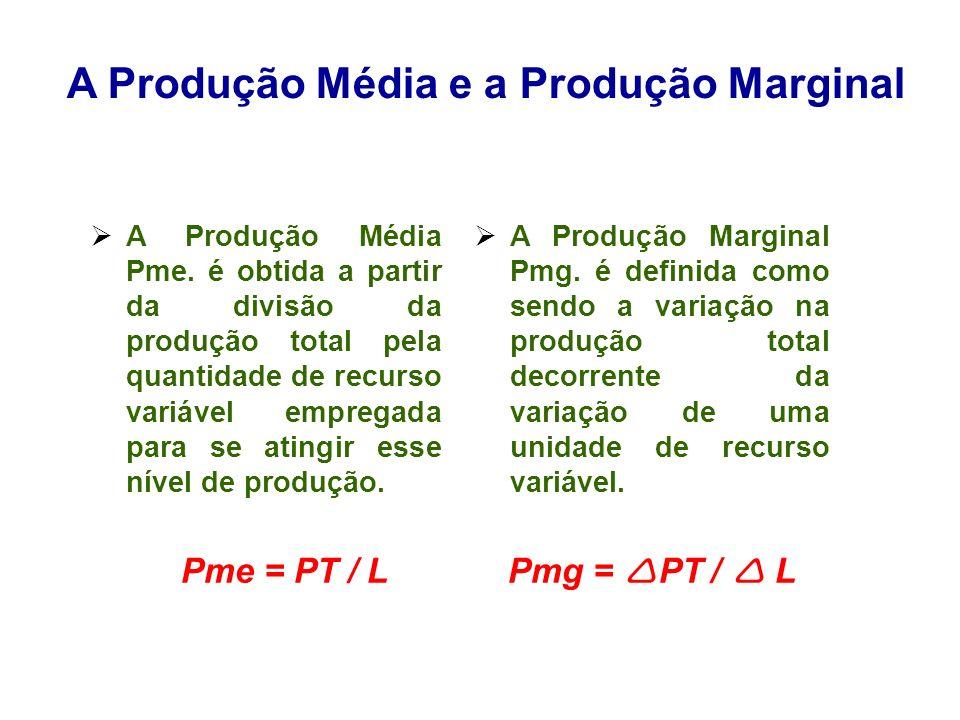 A Produção Média e a Produção Marginal