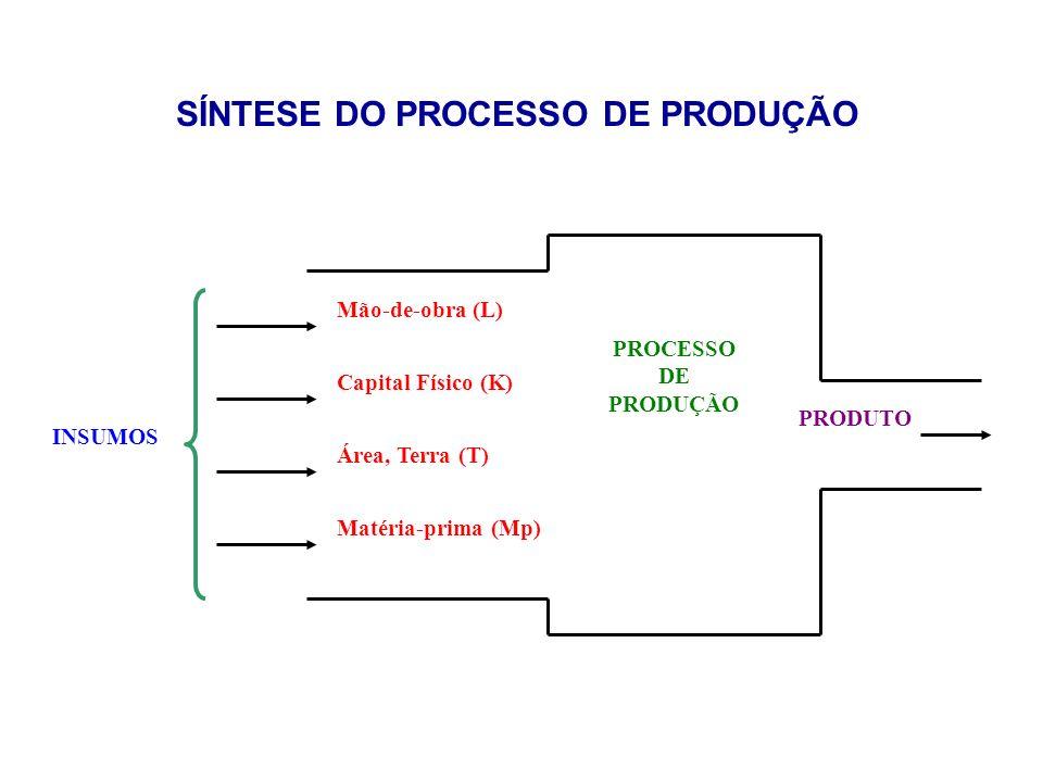 SÍNTESE DO PROCESSO DE PRODUÇÃO