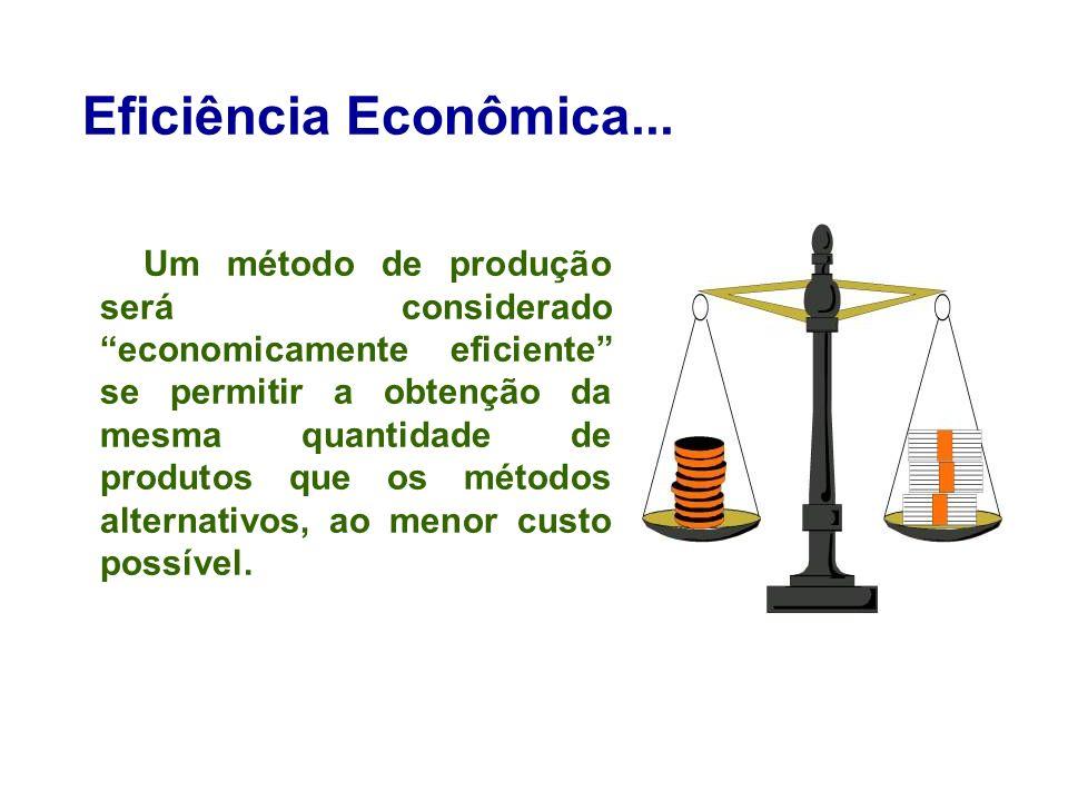 Eficiência Econômica...