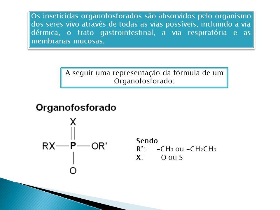 A seguir uma representação da fórmula de um Organofosforado: