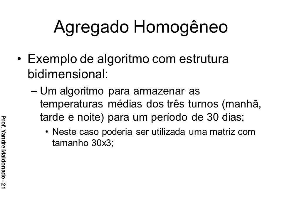 Agregado Homogêneo Exemplo de algoritmo com estrutura bidimensional: