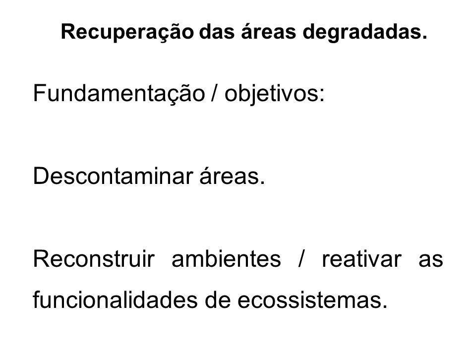 Fundamentação / objetivos: