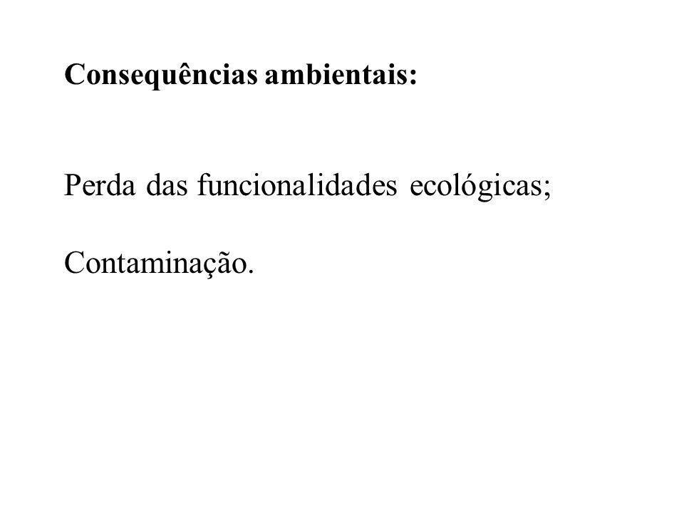 Perda das funcionalidades ecológicas; Contaminação.