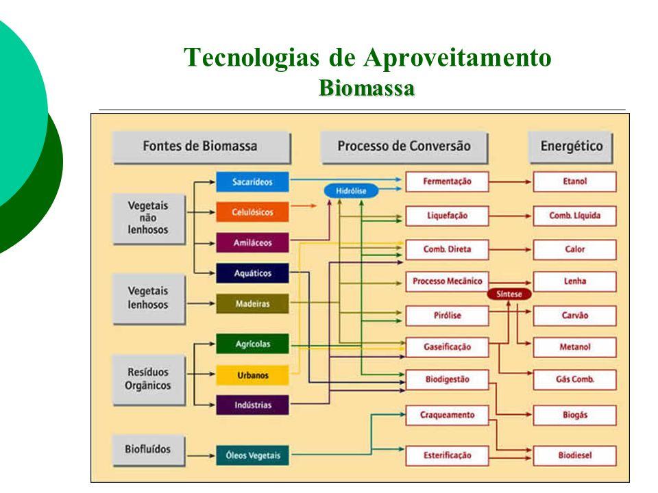 Tecnologias de Aproveitamento Biomassa