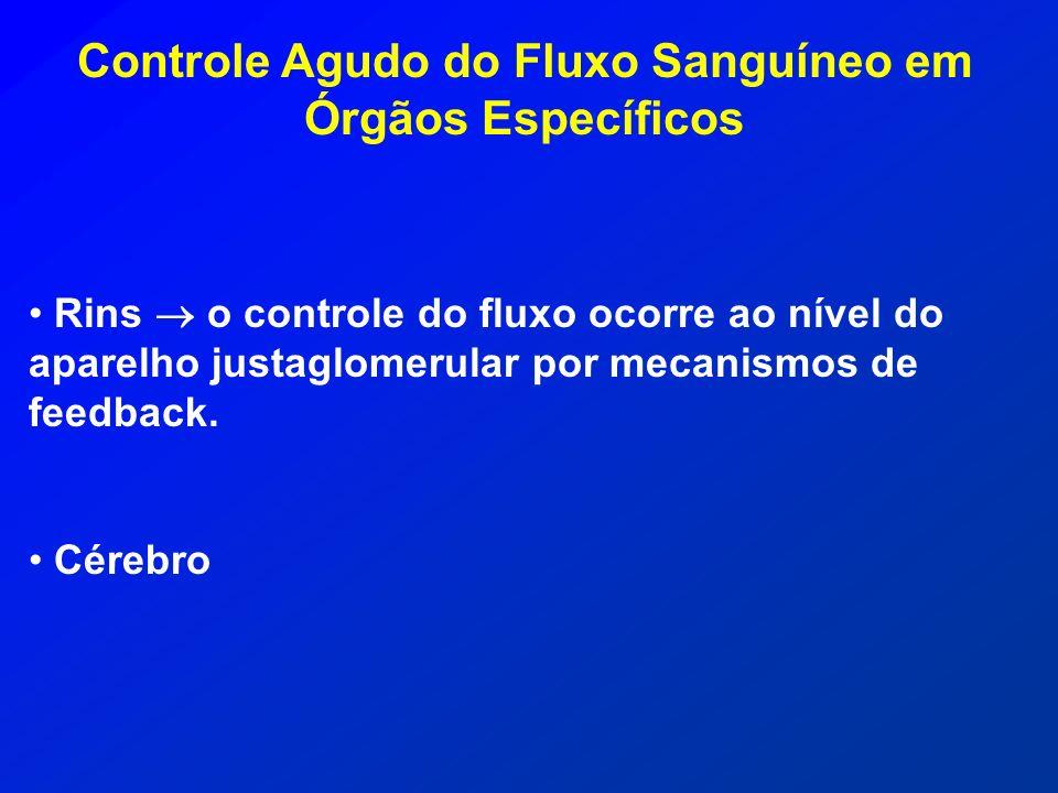 Controle Agudo do Fluxo Sanguíneo em Órgãos Específicos