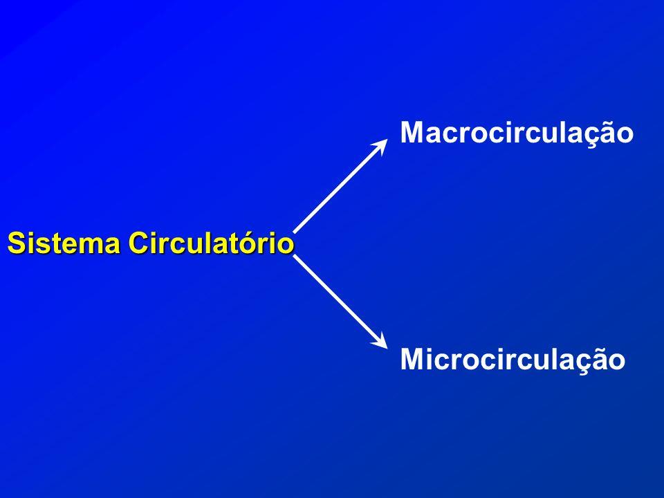 Macrocirculação Sistema Circulatório Microcirculação