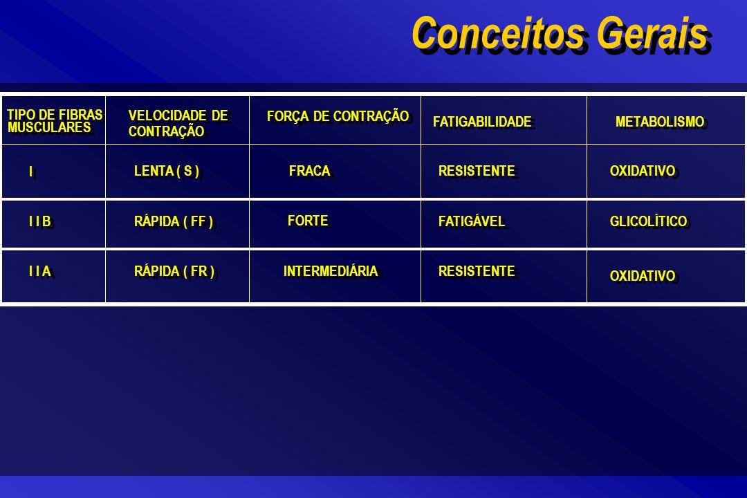 Conceitos Gerais TIPO DE FIBRAS MUSCULARES VELOCIDADE DE CONTRAÇÃO