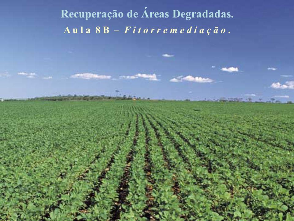 Recuperação de Áreas Degradadas.