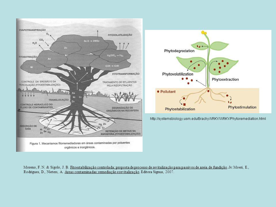 http://systemsbiology.usm.edu/BrachyWRKY/WRKY/Phytoremediation.html