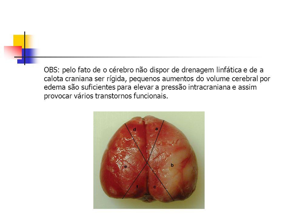 OBS: pelo fato de o cérebro não dispor de drenagem linfática e de a calota craniana ser rígida, pequenos aumentos do volume cerebral por edema são suficientes para elevar a pressão intracraniana e assim provocar vários transtornos funcionais.