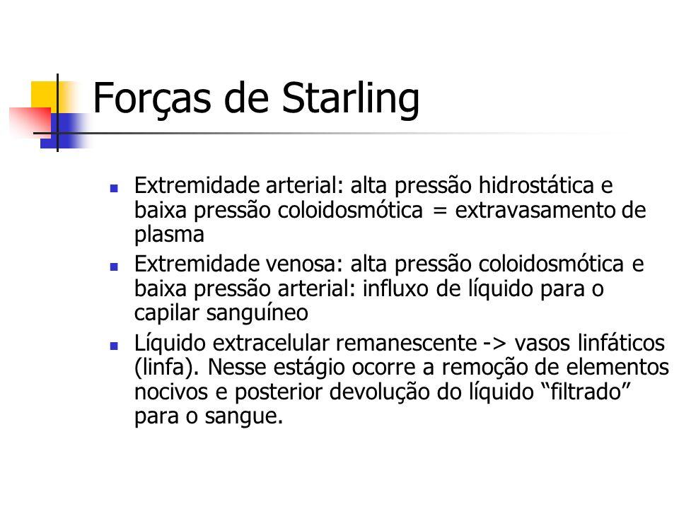 Forças de StarlingExtremidade arterial: alta pressão hidrostática e baixa pressão coloidosmótica = extravasamento de plasma.