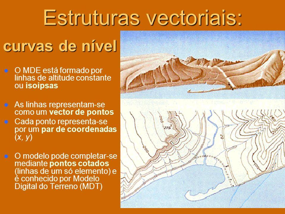 Estruturas vectoriais: