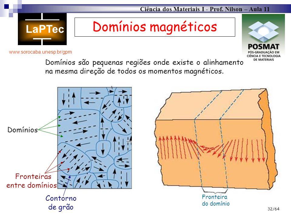 Domínios magnéticosDomínios são pequenas regiões onde existe o alinhamento na mesma direção de todos os momentos magnéticos.