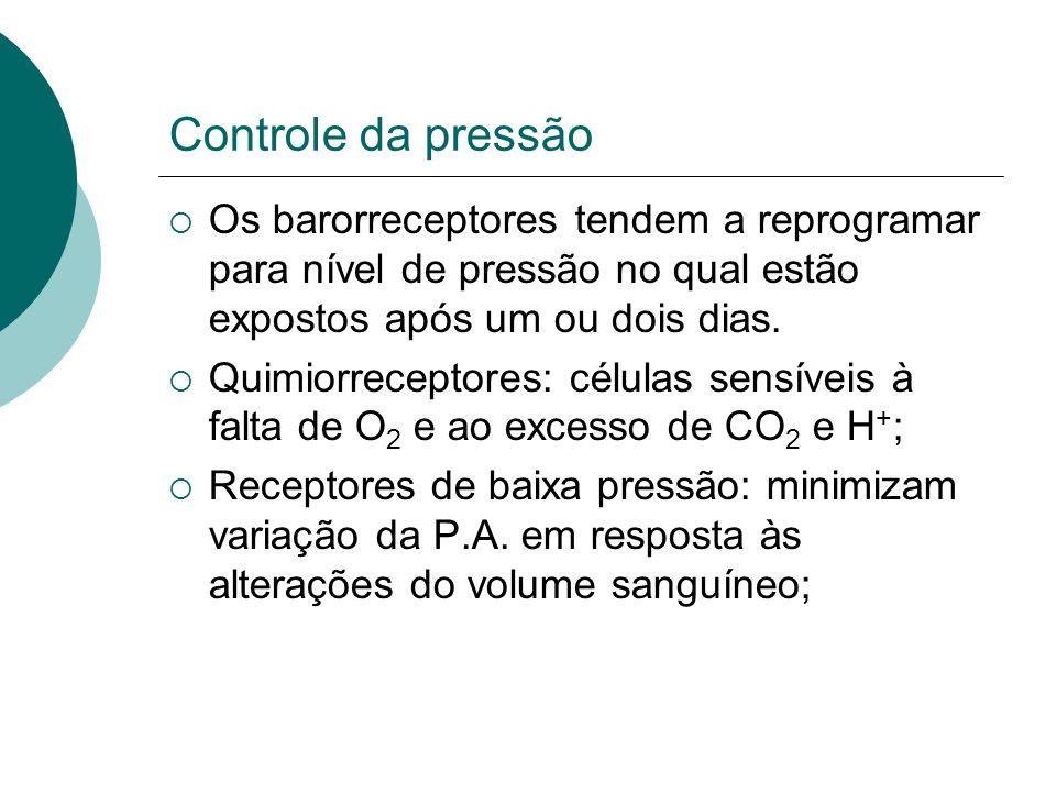 Controle da pressão Os barorreceptores tendem a reprogramar para nível de pressão no qual estão expostos após um ou dois dias.