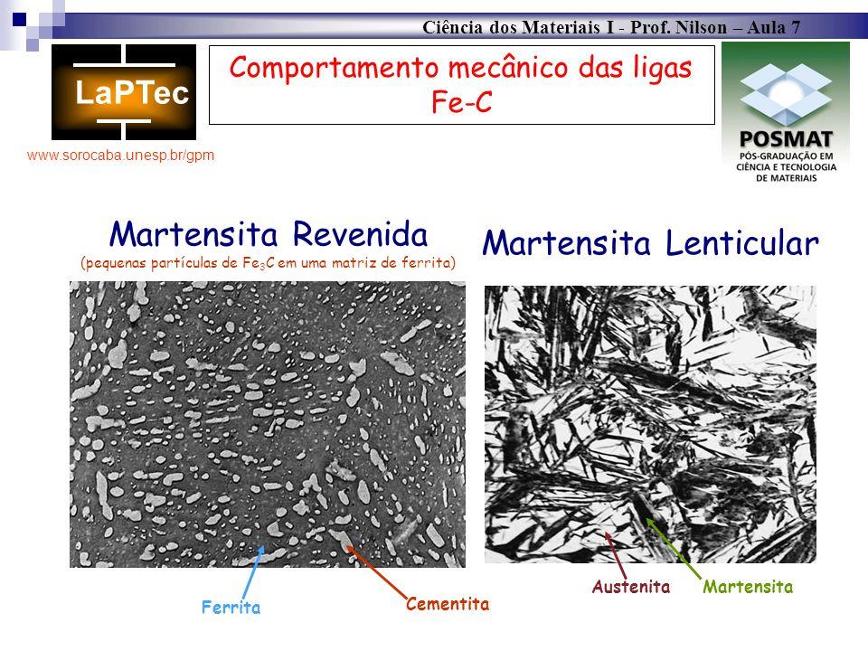 Martensita Lenticular