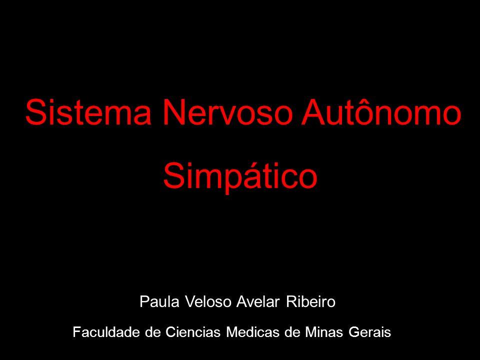 Faculdade de Ciencias Medicas de Minas Gerais