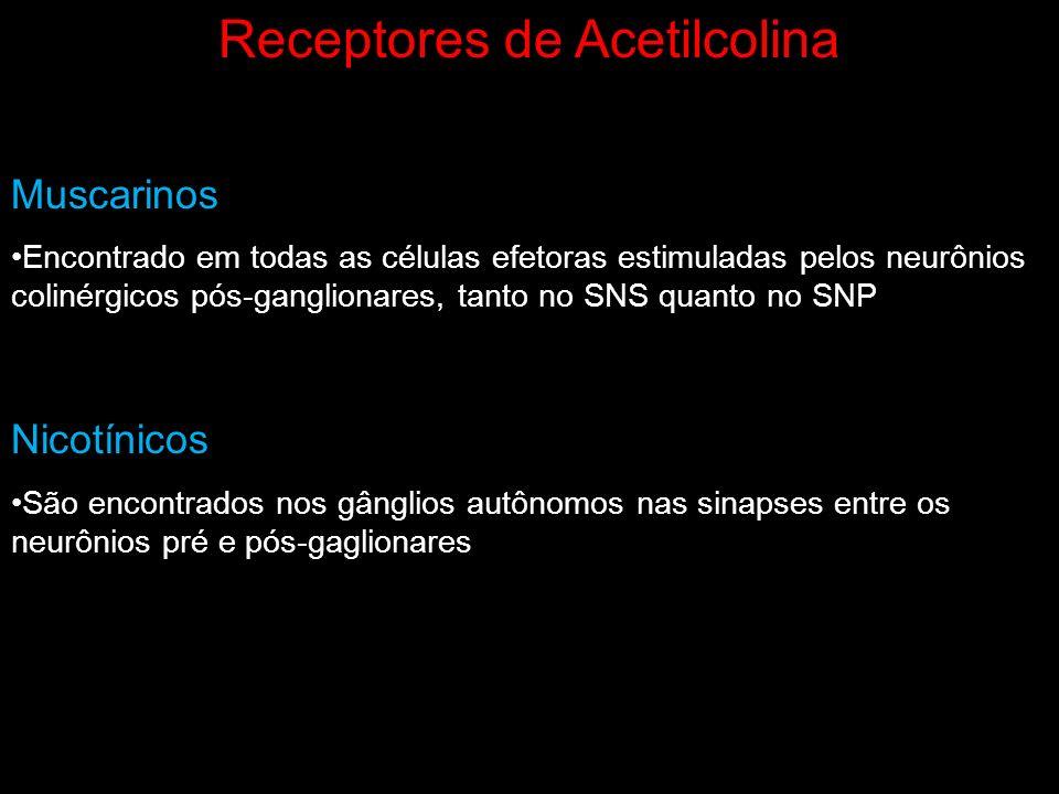 Receptores de Acetilcolina