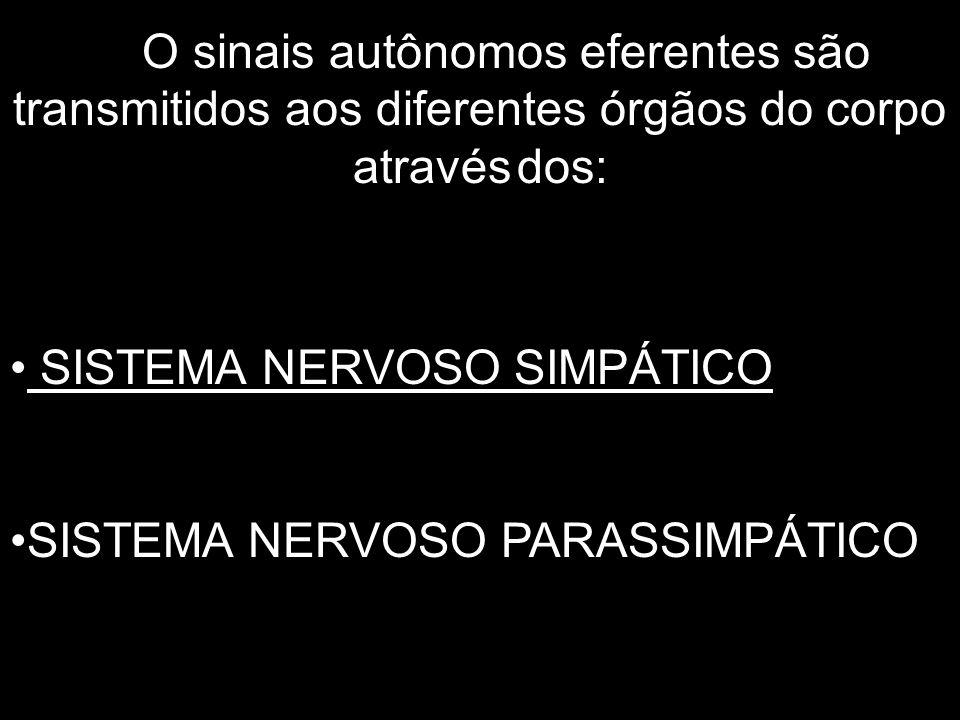 O sinais autônomos eferentes são transmitidos aos diferentes órgãos do corpo através dos: