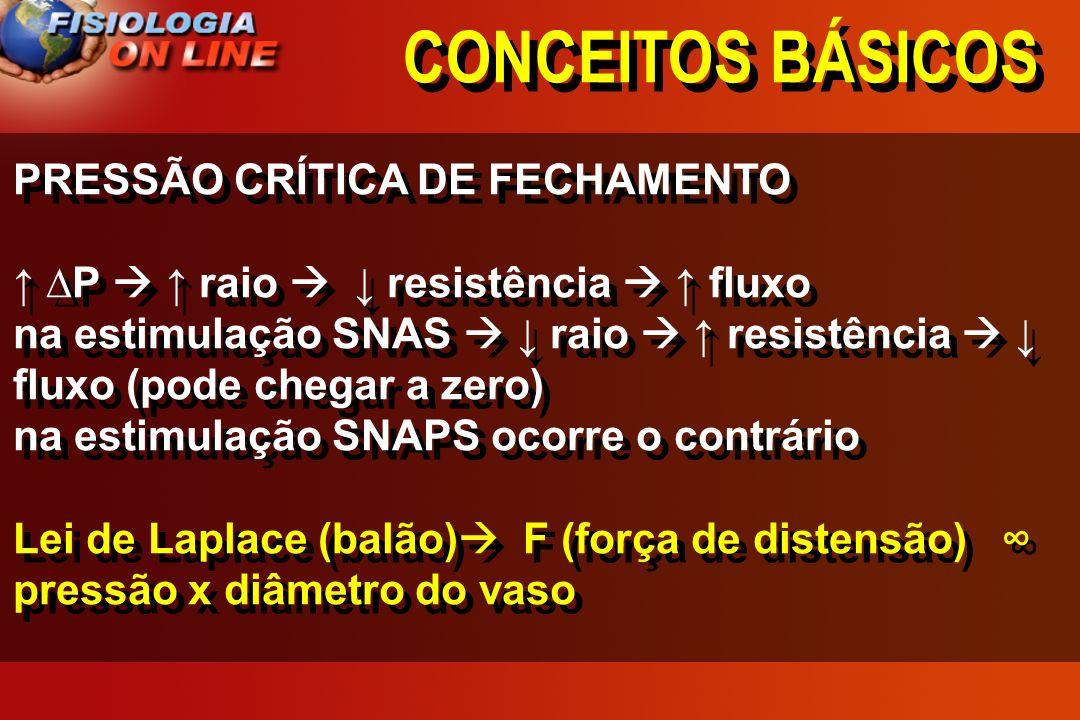 CONCEITOS BÁSICOS PRESSÃO CRÍTICA DE FECHAMENTO
