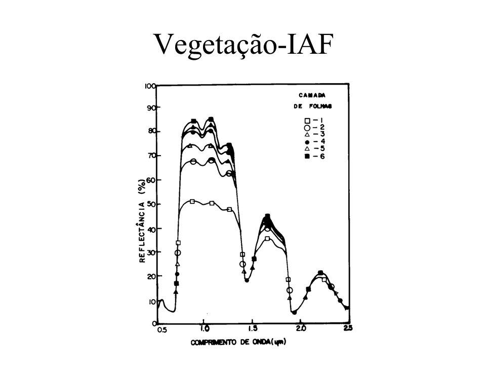Vegetação-IAF