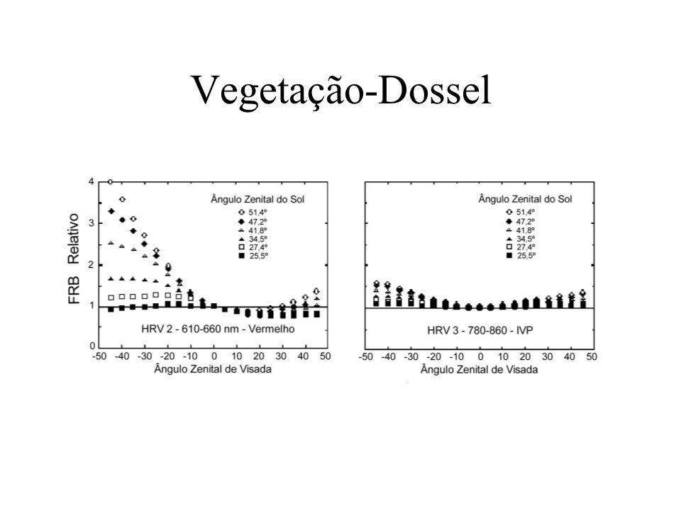Vegetação-Dossel