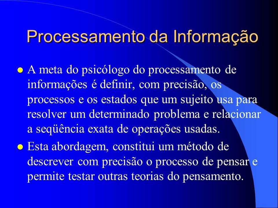 Processamento da Informação