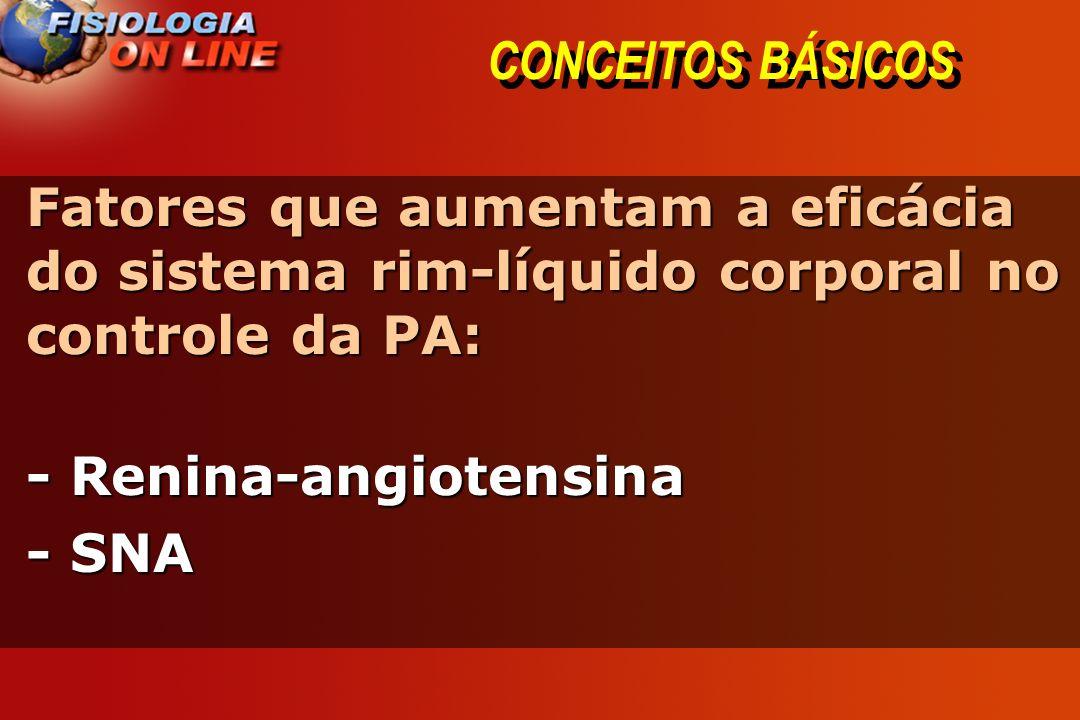 CONCEITOS BÁSICOS Fatores que aumentam a eficácia do sistema rim-líquido corporal no controle da PA: