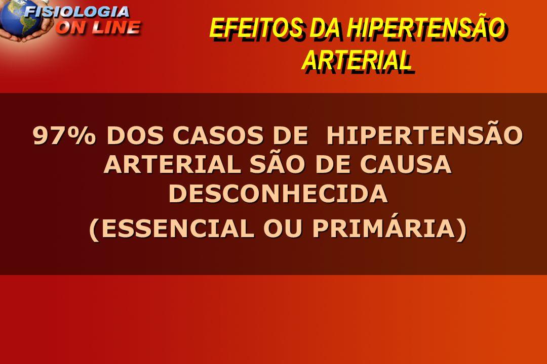 EFEITOS DA HIPERTENSÃO ARTERIAL
