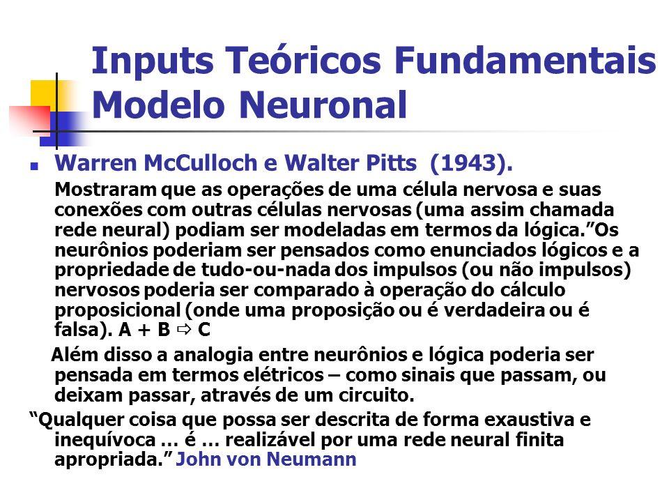 Inputs Teóricos Fundamentais Modelo Neuronal