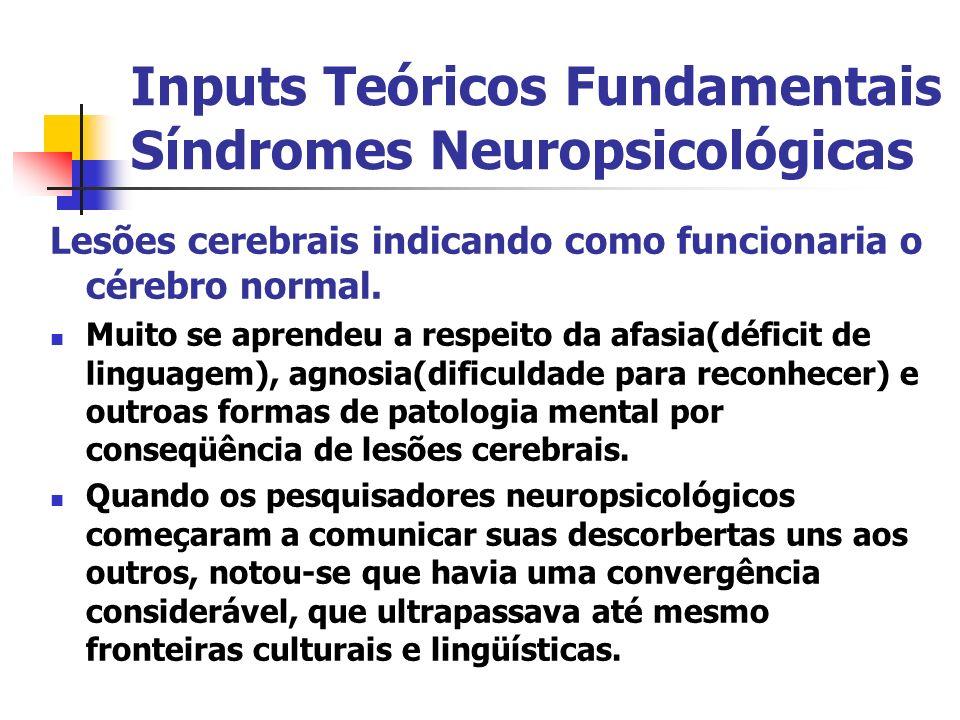 Inputs Teóricos Fundamentais Síndromes Neuropsicológicas
