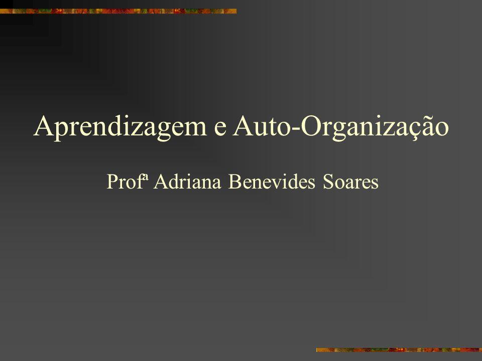 Aprendizagem e Auto-Organização