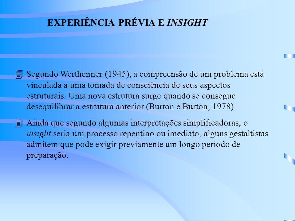 EXPERIÊNCIA PRÉVIA E INSIGHT