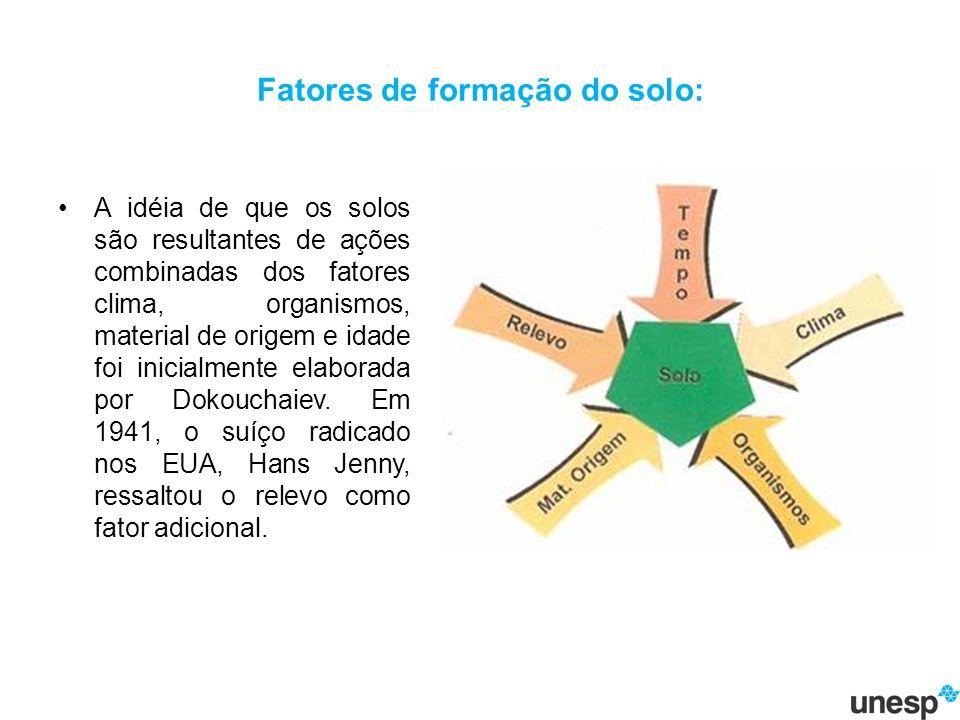 Fatores de formação do solo: