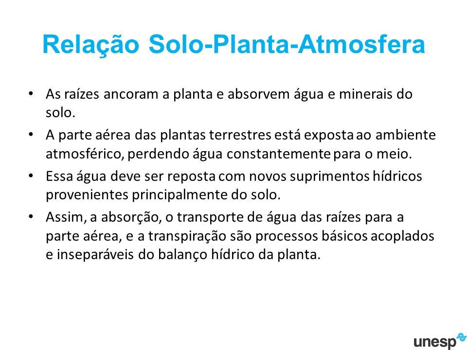 Relação Solo-Planta-Atmosfera