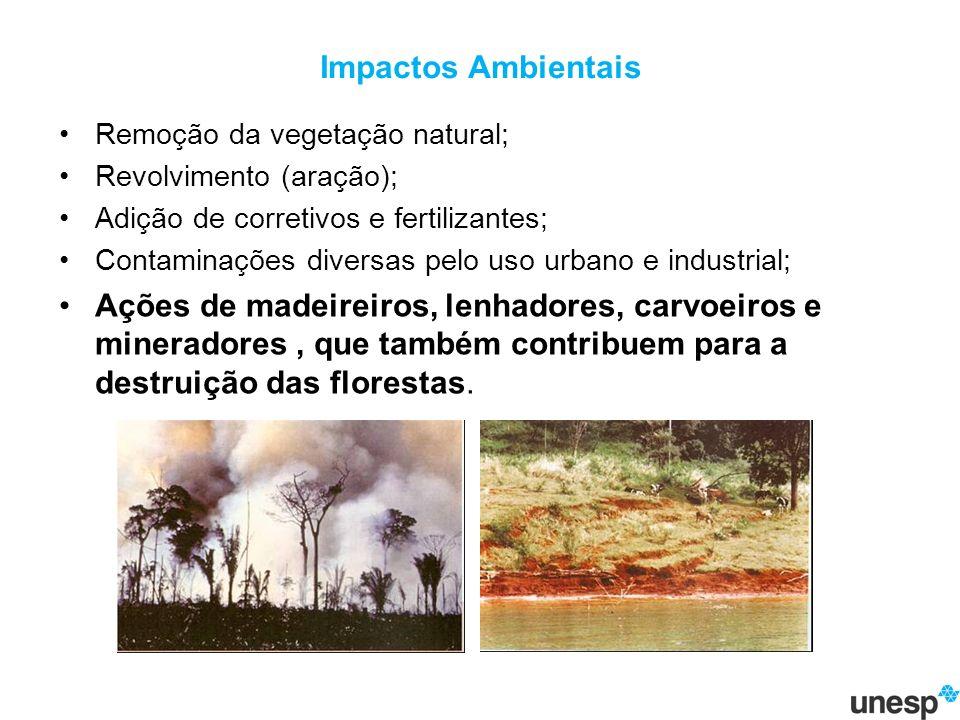 Impactos Ambientais Remoção da vegetação natural; Revolvimento (aração); Adição de corretivos e fertilizantes;