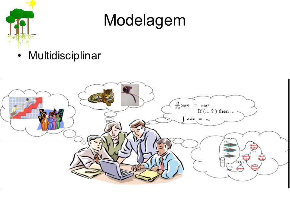 Modelagem Multidisciplinar