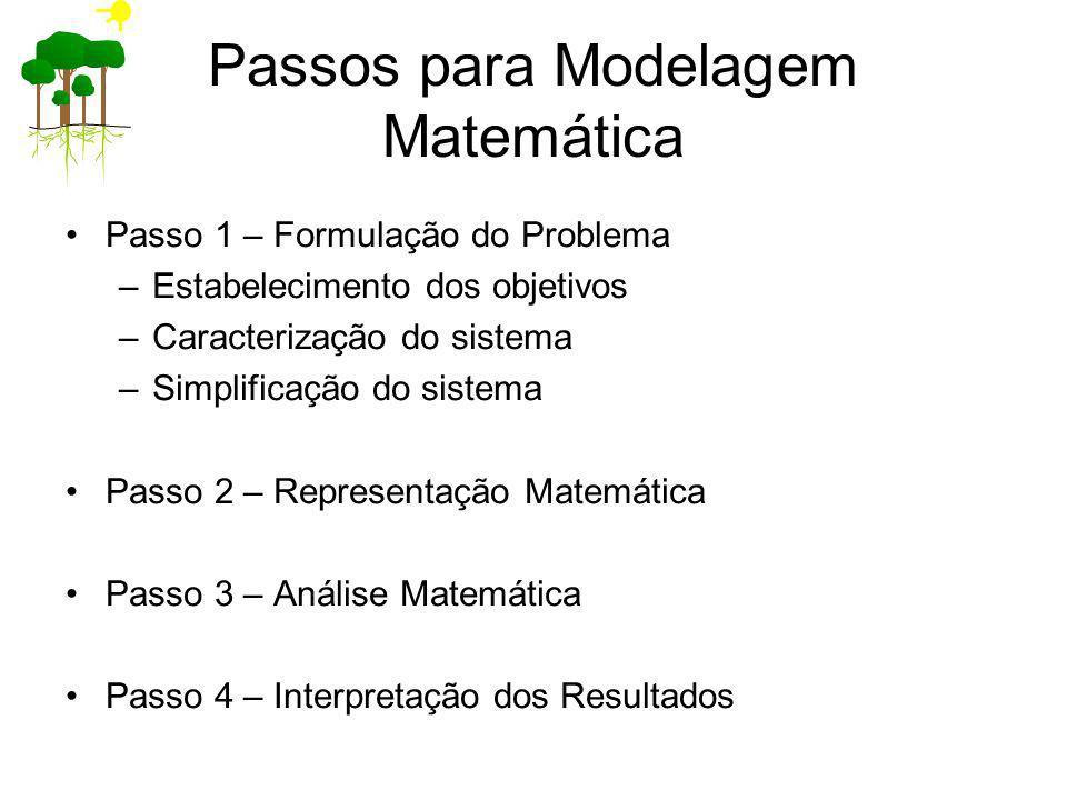 Passos para Modelagem Matemática