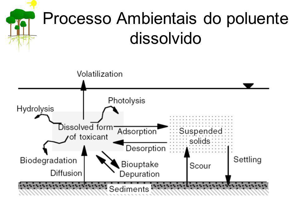 Processo Ambientais do poluente dissolvido