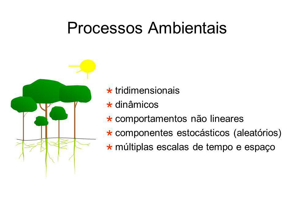 Processos Ambientais tridimensionais dinâmicos