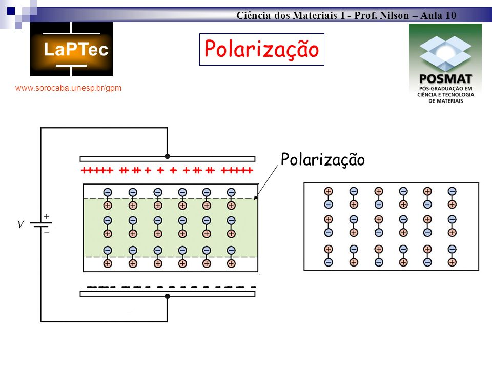 Polarização Polarização + + + + + + + + + + + + + +