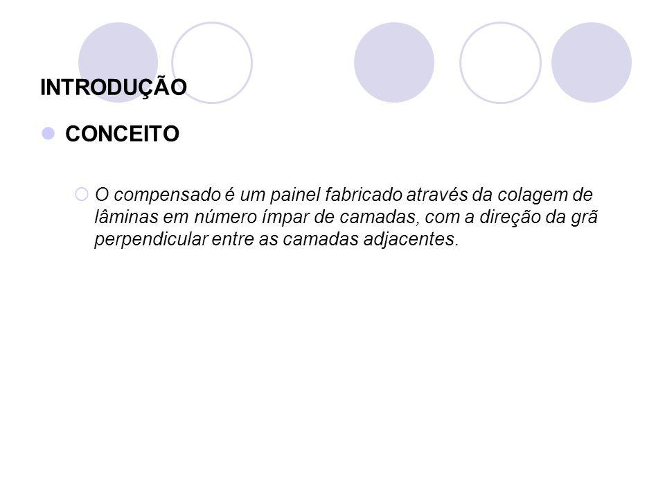 INTRODUÇÃO CONCEITO.